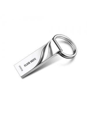 Metal USB Flash Drive 1000GB Thumb Drive Pen Drive Waterproof Memory Stick with Keychain (Silver)
