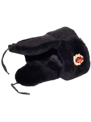 Navy Officer of the Russian Federation Lambskin Ushanka Hat, Soldier Insignia