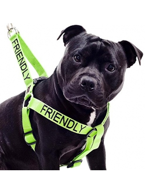 """FRIENDLY"" Green Color Coded Non-pull Dog Harness (Known As Friendly) PREVENTS Accidents By Warning Others of Your Dog in Advance!"