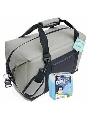 Polar Bear Coolers Nylon Solar Bear Series Soft Cooler Tote Size 24 Pack Silver & Fit & Fresh Cool Coolers Slim Ice 4-Pack (Bundle)