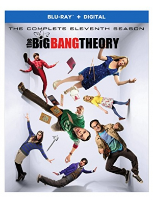 Big Bang Theory, The: S11 (BD)