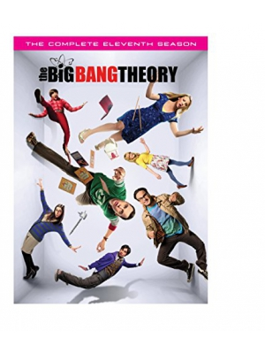 Big Bang Theory, The: S11 (DVD)